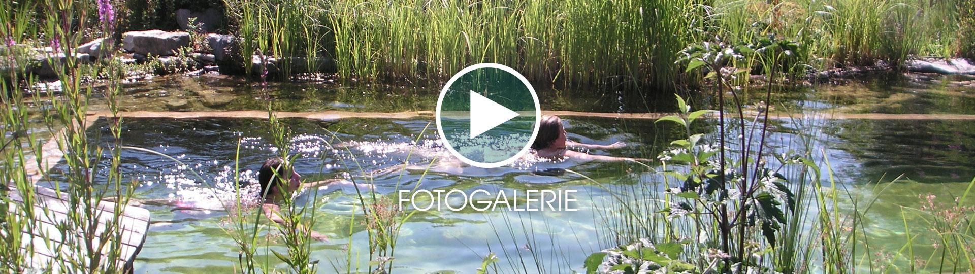 Wasser Im Garten · Schwimmteich